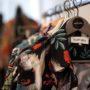 Кейс: как повысить конверсию интернет-магазина одежды в 4x?
